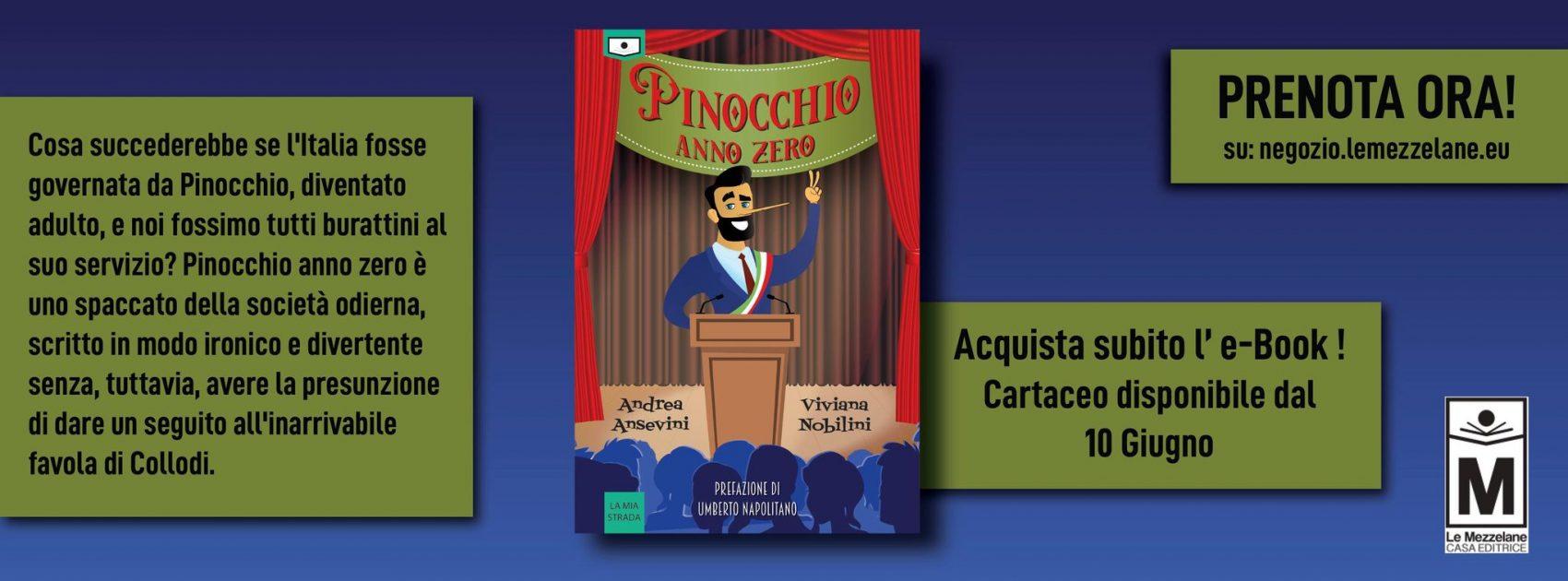 Cosa succederebbe se l'Italia fosse governata da Pinocchio, diventato adulto, e noi fossimo tutti burattini al suo servizio? Pinocchio anno zero è uno spaccato della società odierna, scritto in modo ironico e divertente senza, tuttavia, avere la presunzione di dare un seguito all'inarrivabile favola di Collodi.